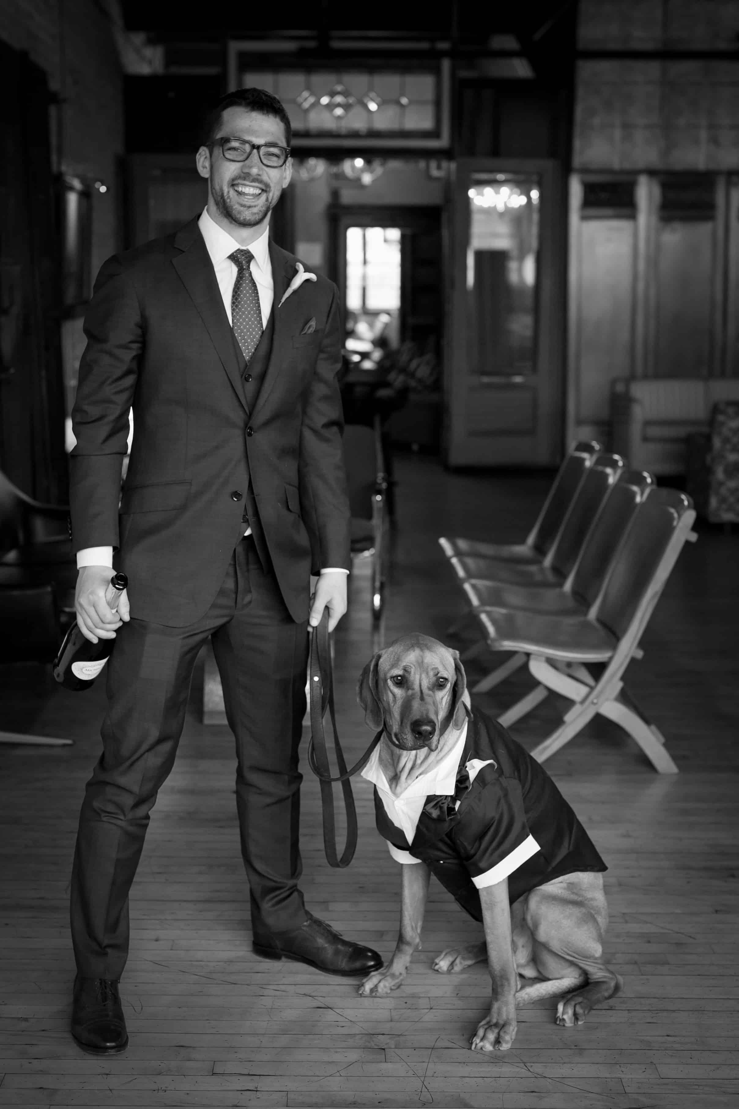 Rhodesian Ridgeback, wedding, dog, ring bearer, chicago,