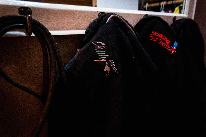 Rhodesian Ridgeback, jacket, winter, dogs, marking our territory, dog blog, pet friendly