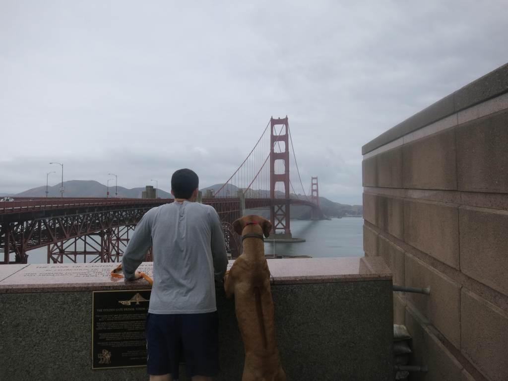 pet friendly blog, traveling with your pet