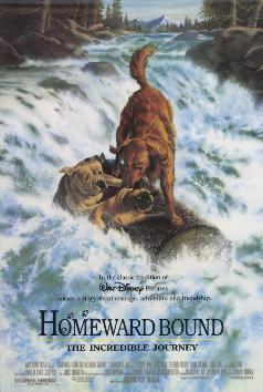 Homeward.bound_dvd_cover