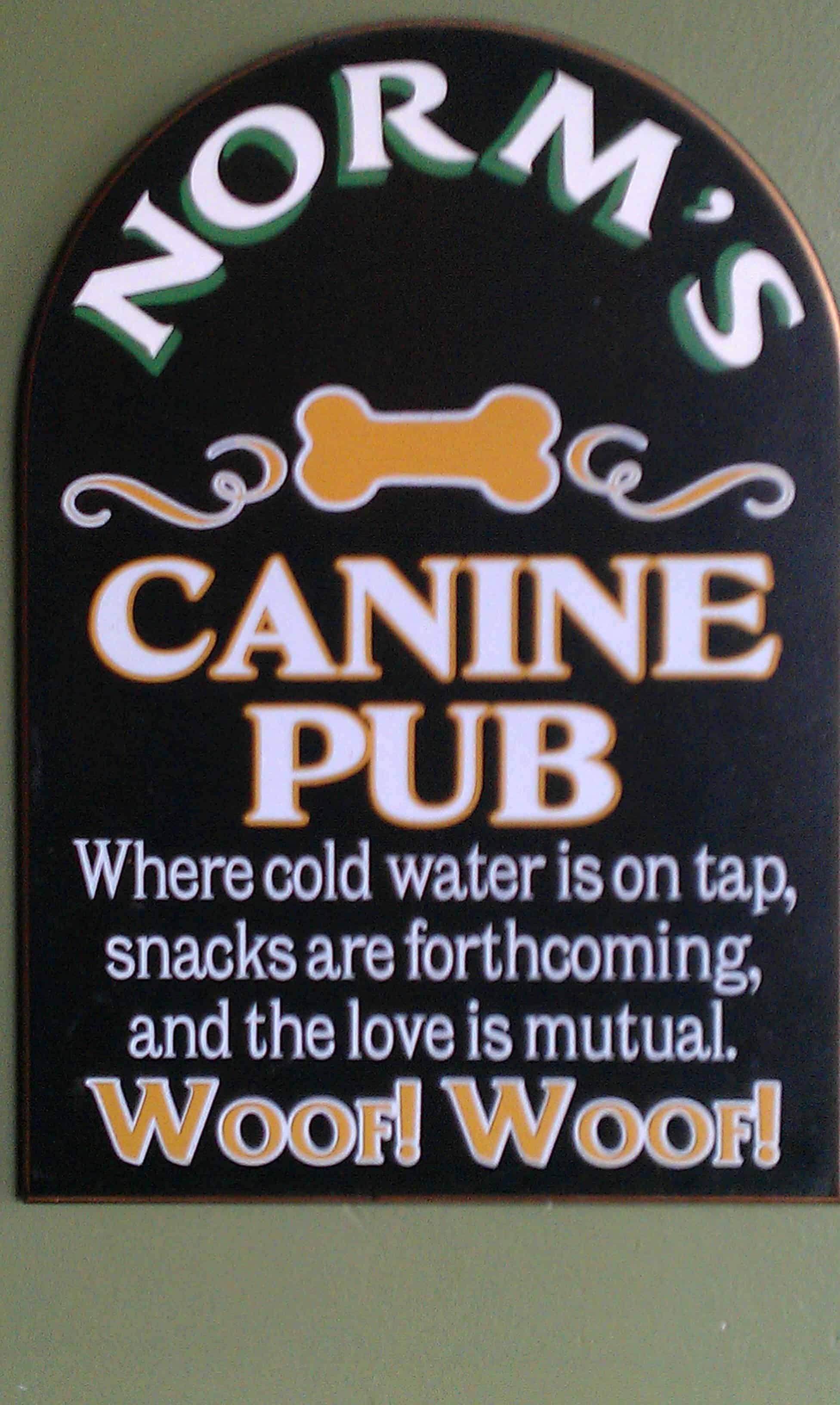 dog friendly seattle