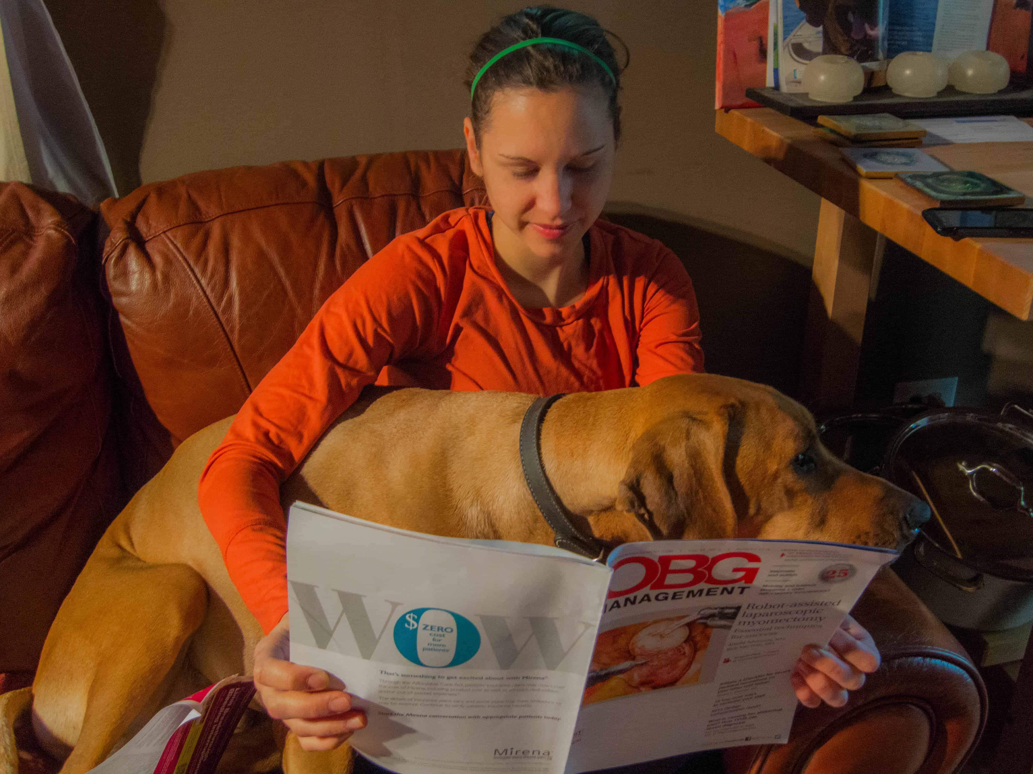 Rhodesian Ridgeback, adventure, marking our territory, dogs, dog blog, Eko