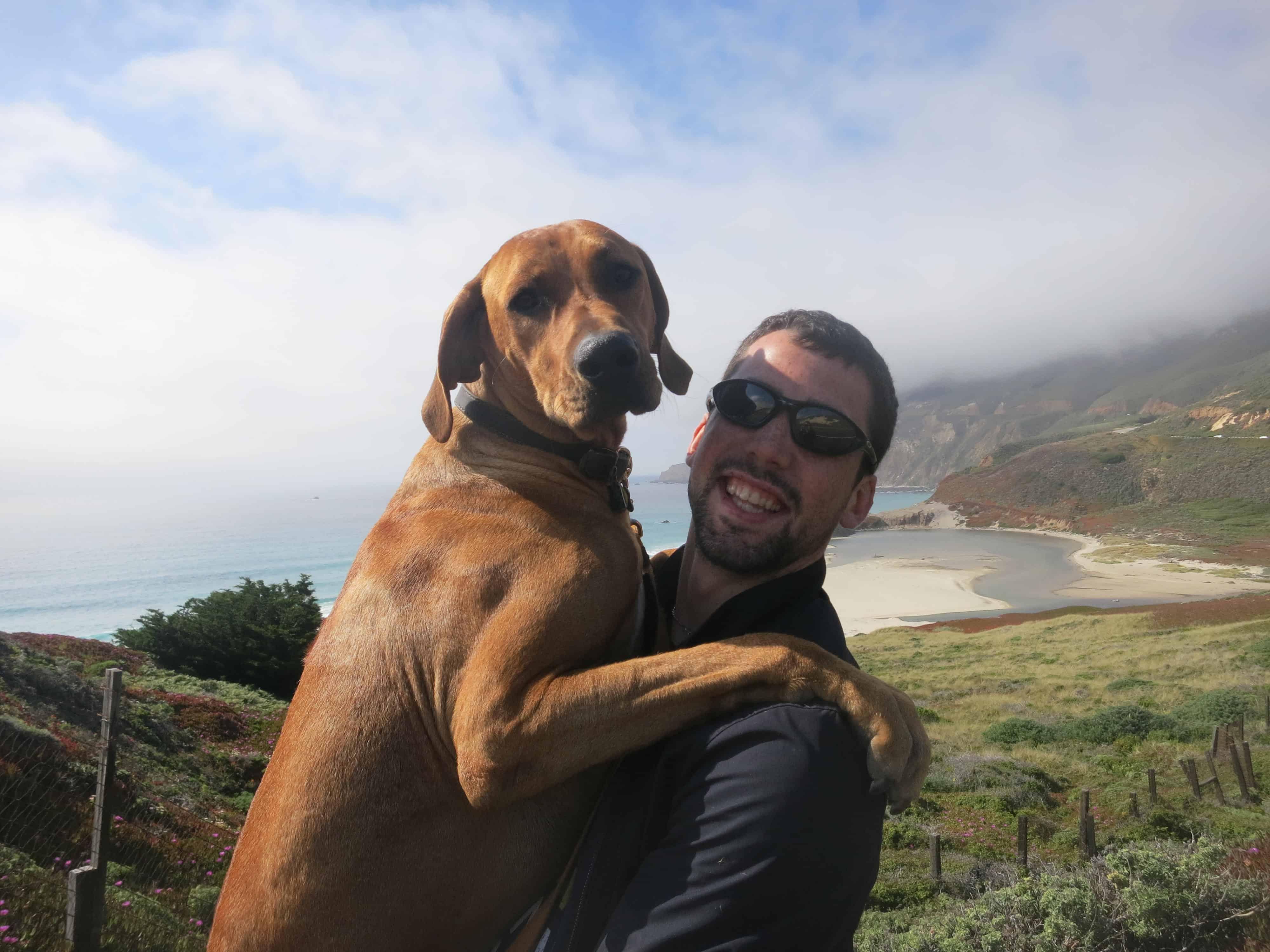 dog friendly california