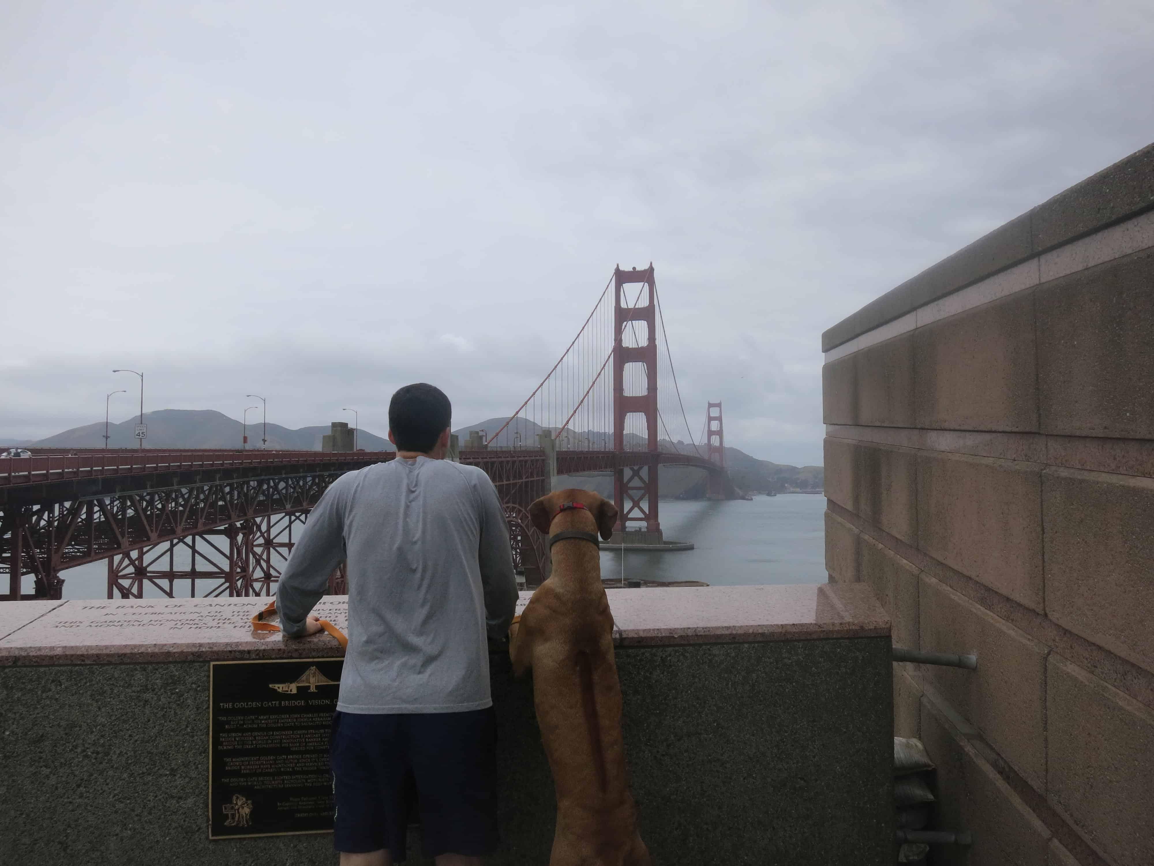 dog friendly san francisco