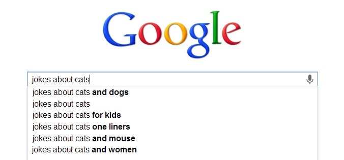 funny, google, dogs, cats, pets
