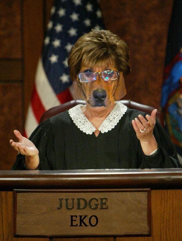 Judge Eko